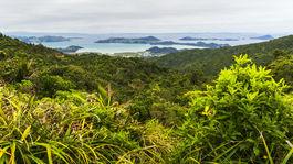 Nový Zéland, Polostrov Coromandel, Cathedral Cove