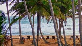 Mirissa, Srí Lanka, more, palmy