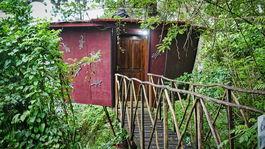 Srí Lanka, domček na strome