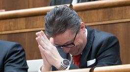 parlament, verejne hlasovanie, Glvac,