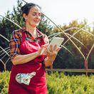 žena, záhrada, tablet