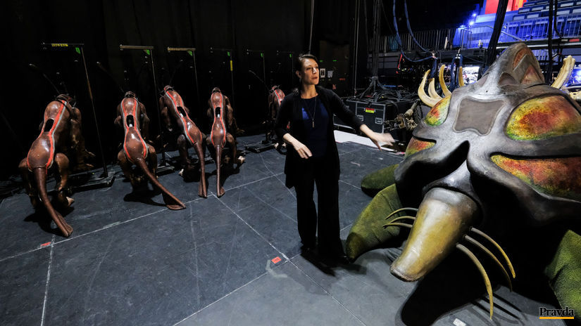 Cirque du Soleil Toruk The First Flight