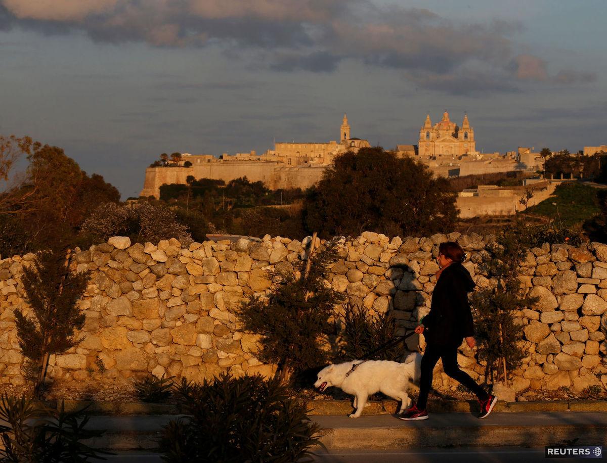 Malta, pes, venčenie, prechádzka,