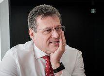 Šefčoviča podporil český prezident aj vicepremiér