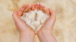 Izrael, soľ, Mŕtve more