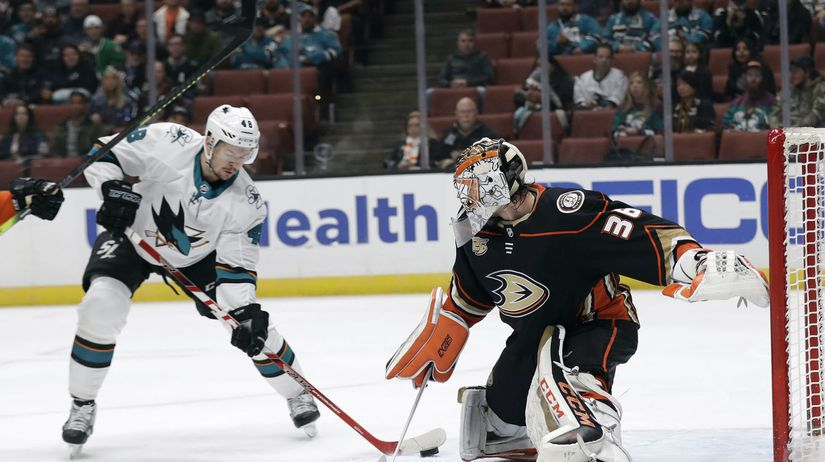 Sharks Ducks Hockey NHL