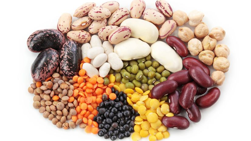 fazuľa, cícer, šošovica, strukoviny