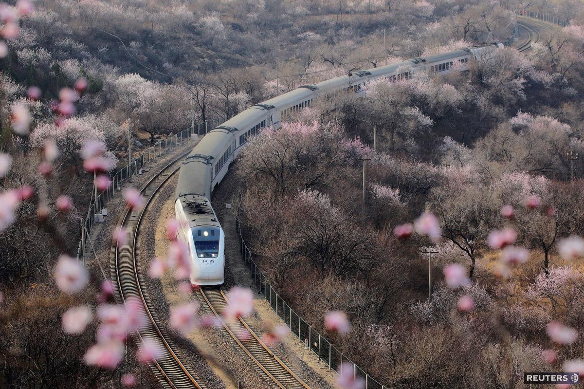 vlak, Čína, kvety,