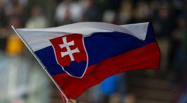 Nemecko SR Hokej EHCH MS2019 príprava vlajka Slovensko