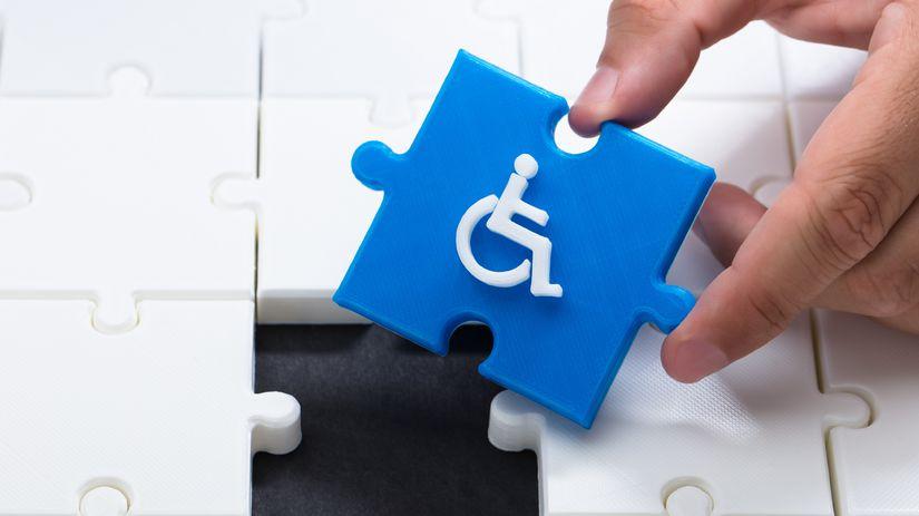 ZŤP, ŤZP, invalid