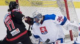 Rakúsko SR hokej Slovensko MS2019 Godla