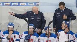 Rakúsko SR hokej Slovensko MS2019 príprava