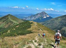 hory, lesy, turista, turistika