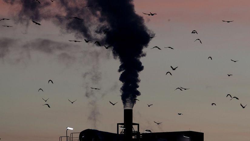OSN správa druhy vymieranie hrozba dym vtáky komín