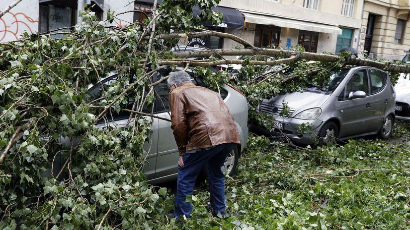 chorvátsko, záhreb, vietor, vyrátený strom,...