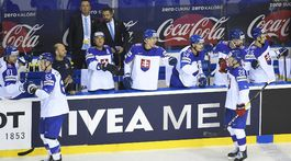 slovensko, hokej, striedačka, radosť