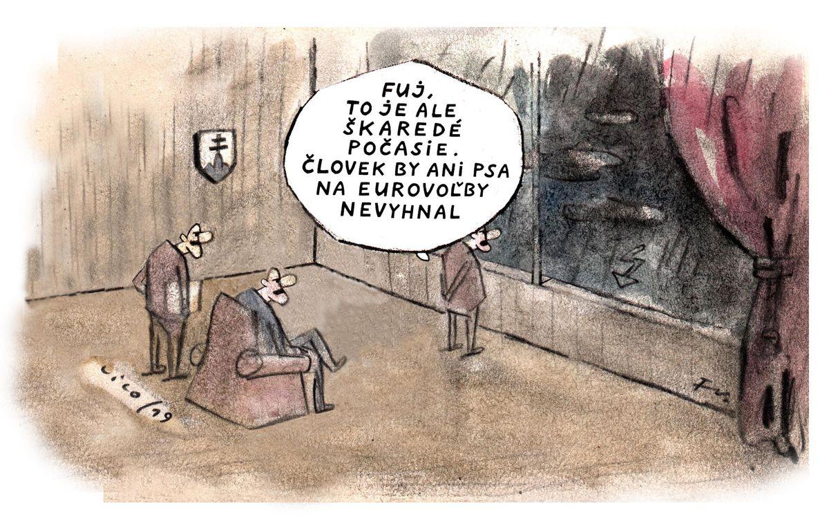 Karikatúra 24.05.2019