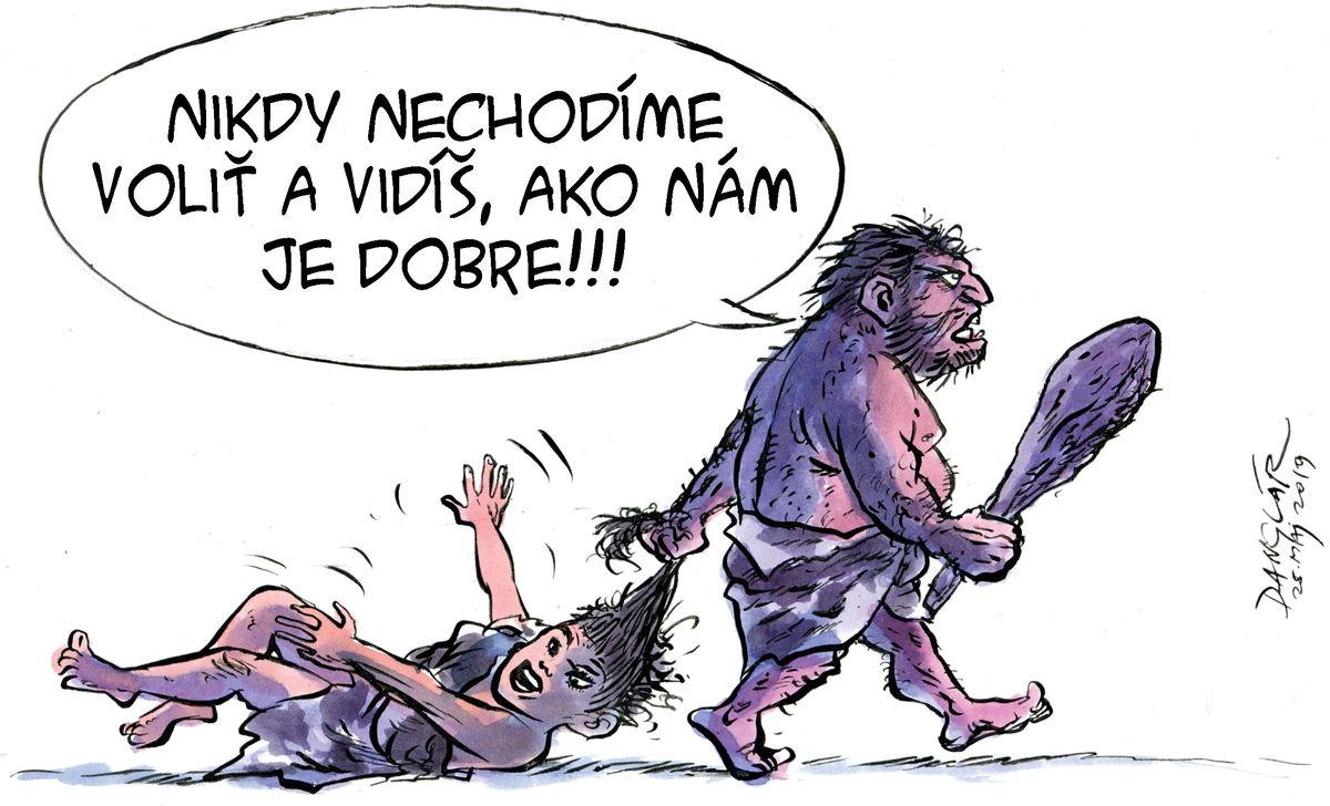 Karikatúra 25.05.2019