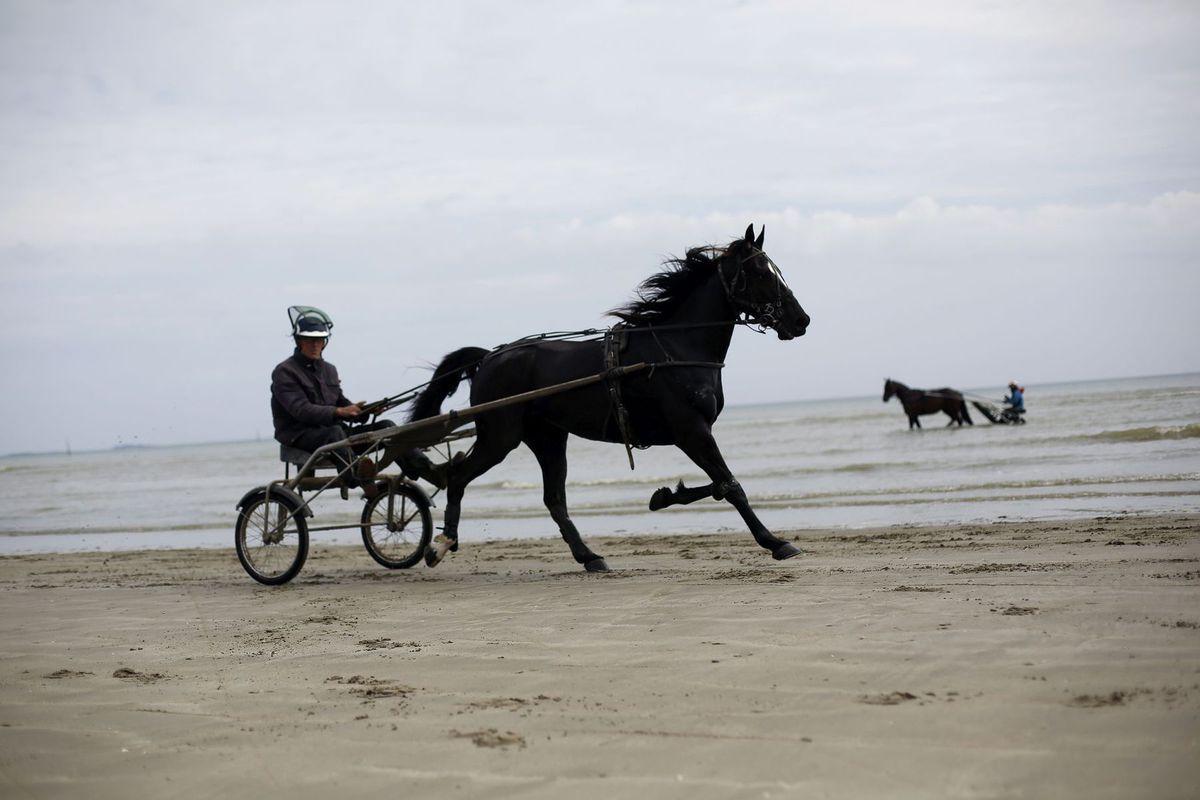 Francúzsko, kôň, voz, pláž