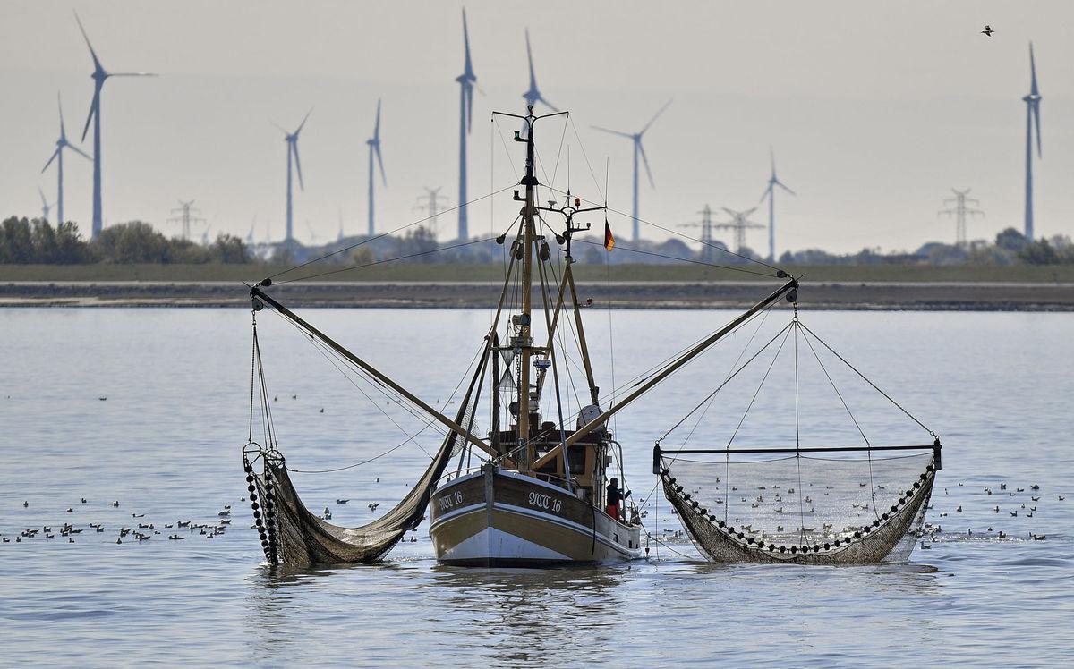 loď, rybári, čln, lovenie, lov,