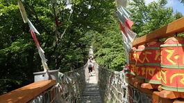 Stezka Valaška, chodník korunami stromov, Morava