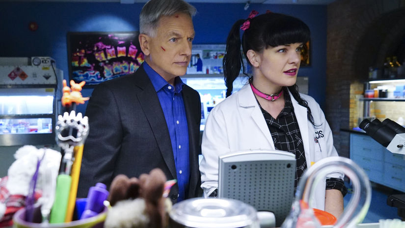 ncis, pauley perrette, mark harmon,