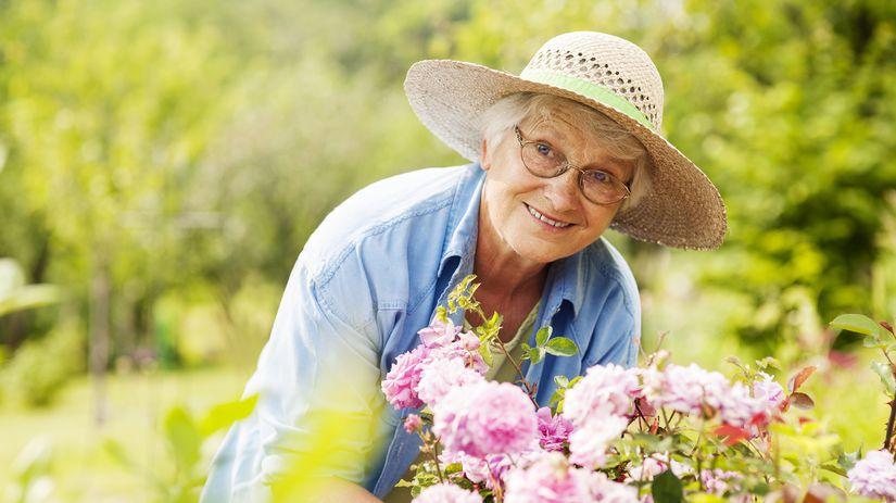 senior, dôchodca, kvety