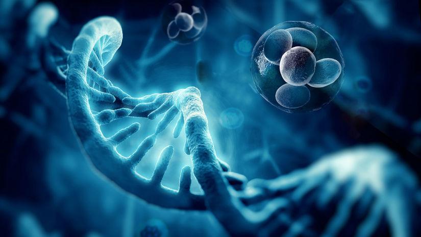 DNA, gény, genetická informácia