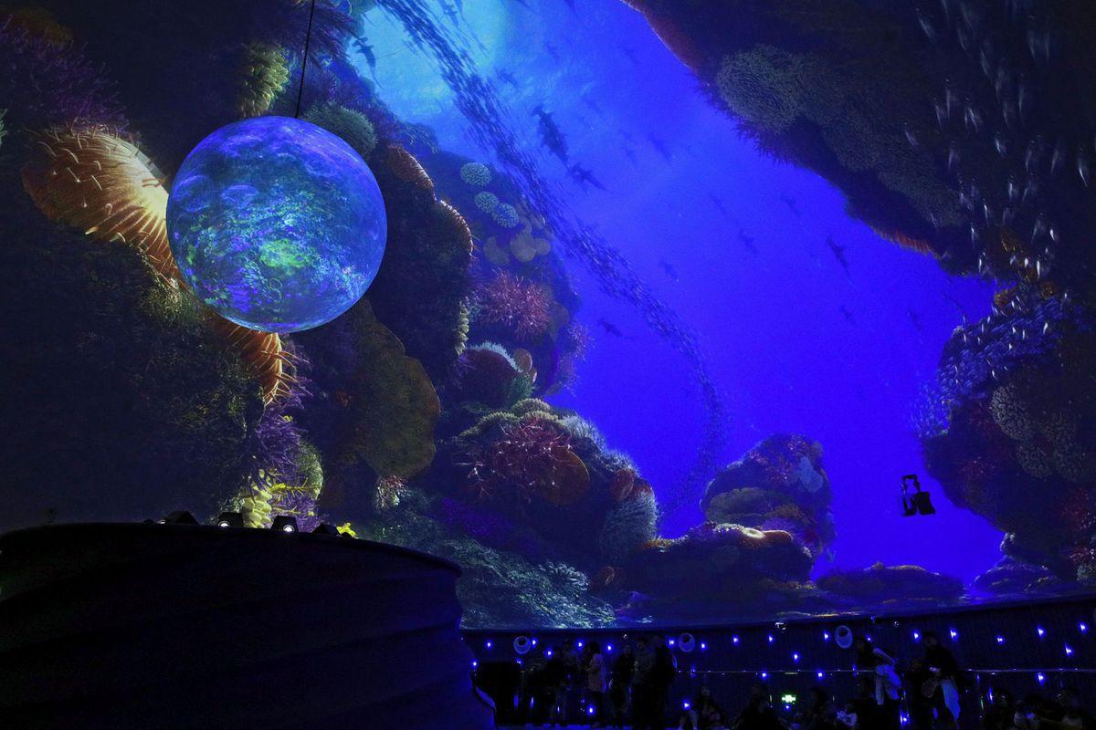 Čína, more, podmorský svet, kino