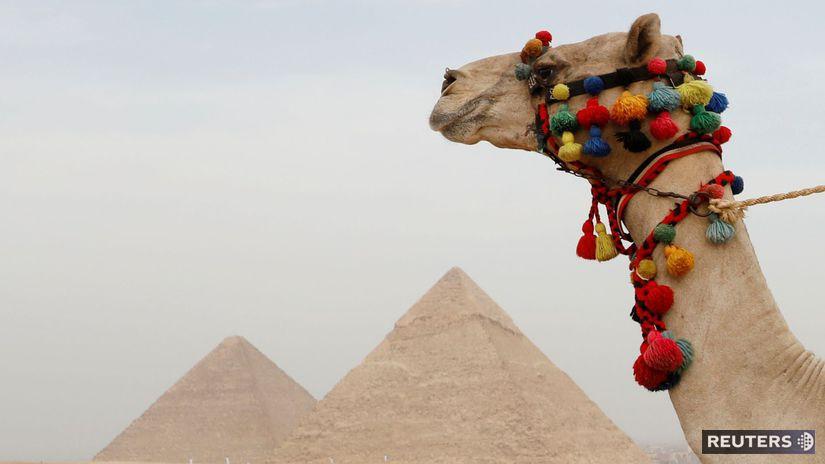 Egypt / pyramída / ťava, púšť,