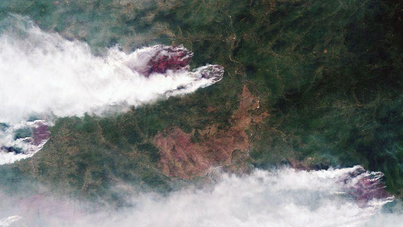 Rusko Sibír lesné požiare životné prostredie