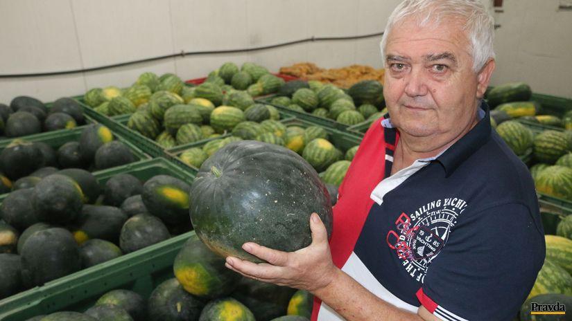 melóny, Ľudovít Kiss zo Želiezoviec