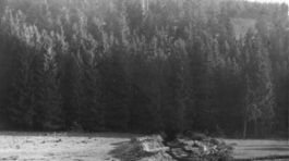 SNP, Protitankovy zasek  Strb. Teplice - Cremosne  foto Dr. Szekely
