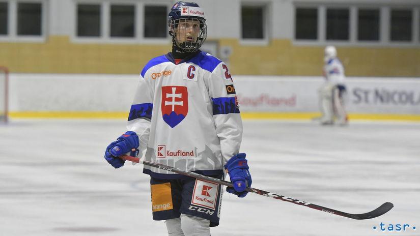Hokejová reprezentácia