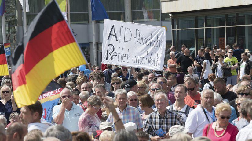 nemecko, AfD, Cottbuse, brandenbursko, vlajka