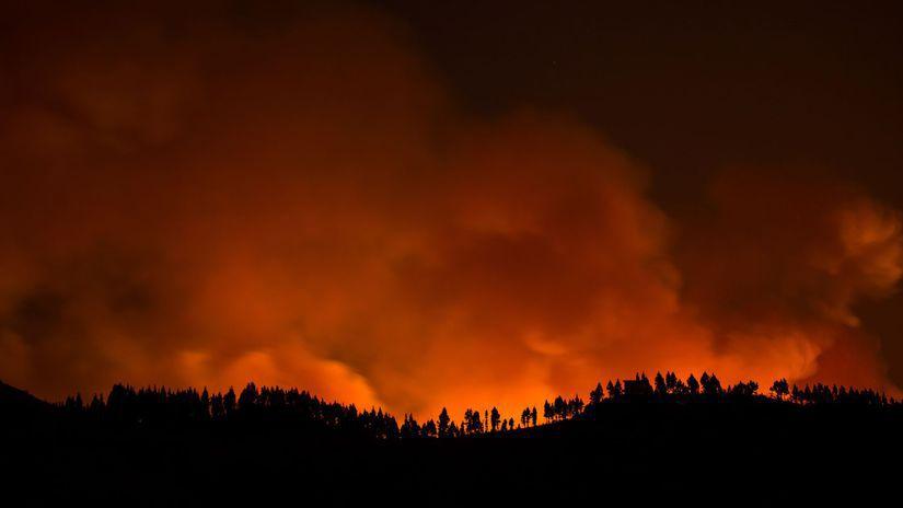 španielsko, gran canaria, požiar, les, oheň