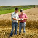 pôda, urbáre, hospodárstvo, spoločnépozemky, pozemkové spoločenstvo,