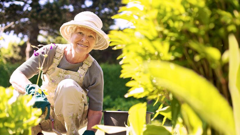 záhrada, práca v záhrade, záhradkárka,...