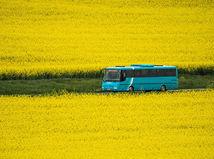 06 autobus 3x