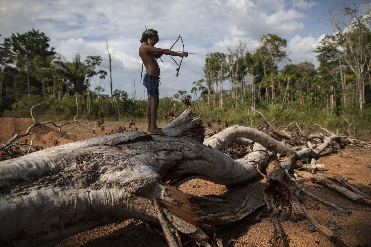 Brazília, Amazónia, prales, domorodec