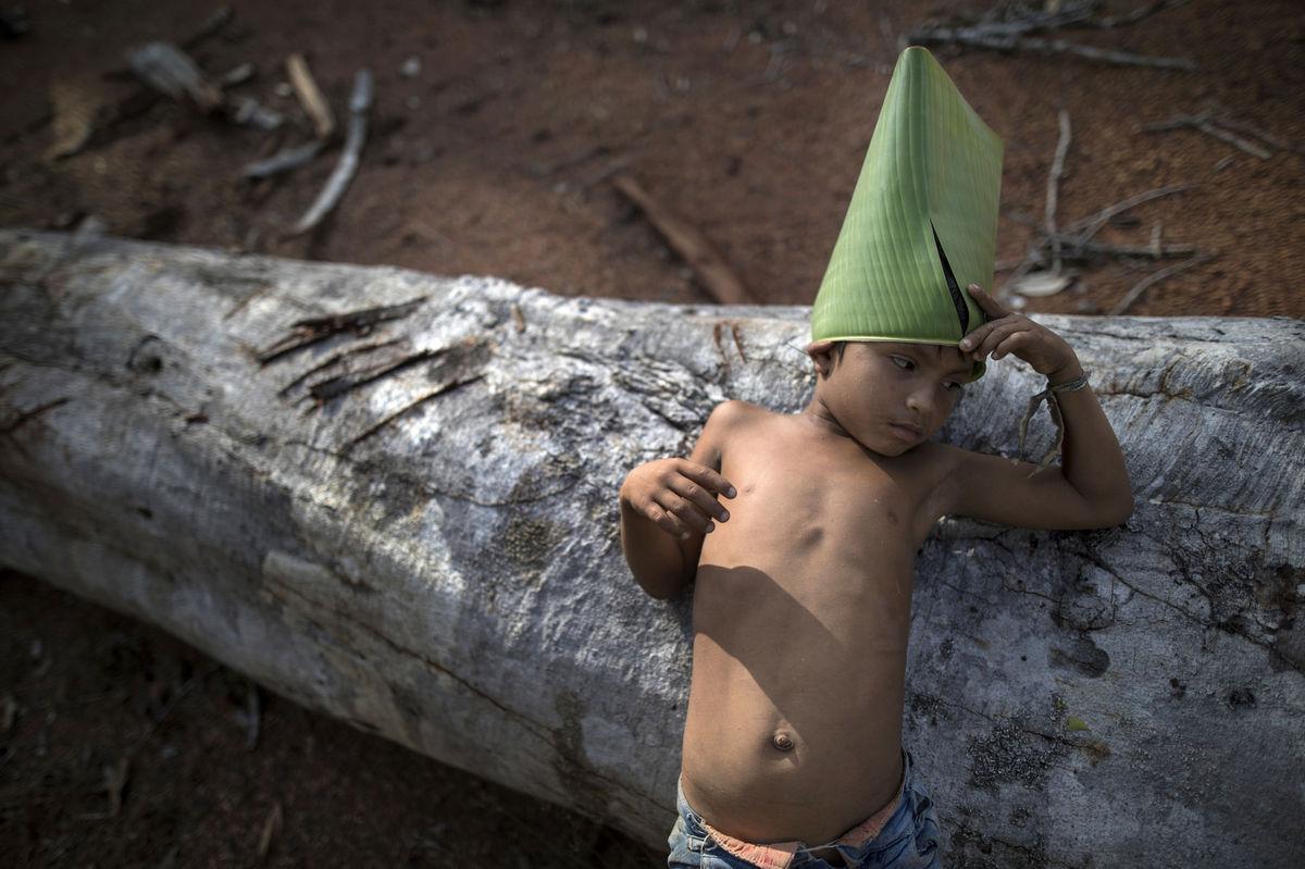 Brazília, Amazónia, prales, domorodec,