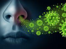 chrípka, baktéria, vírus, nádcha, prechladnutie