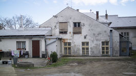 sokolska2