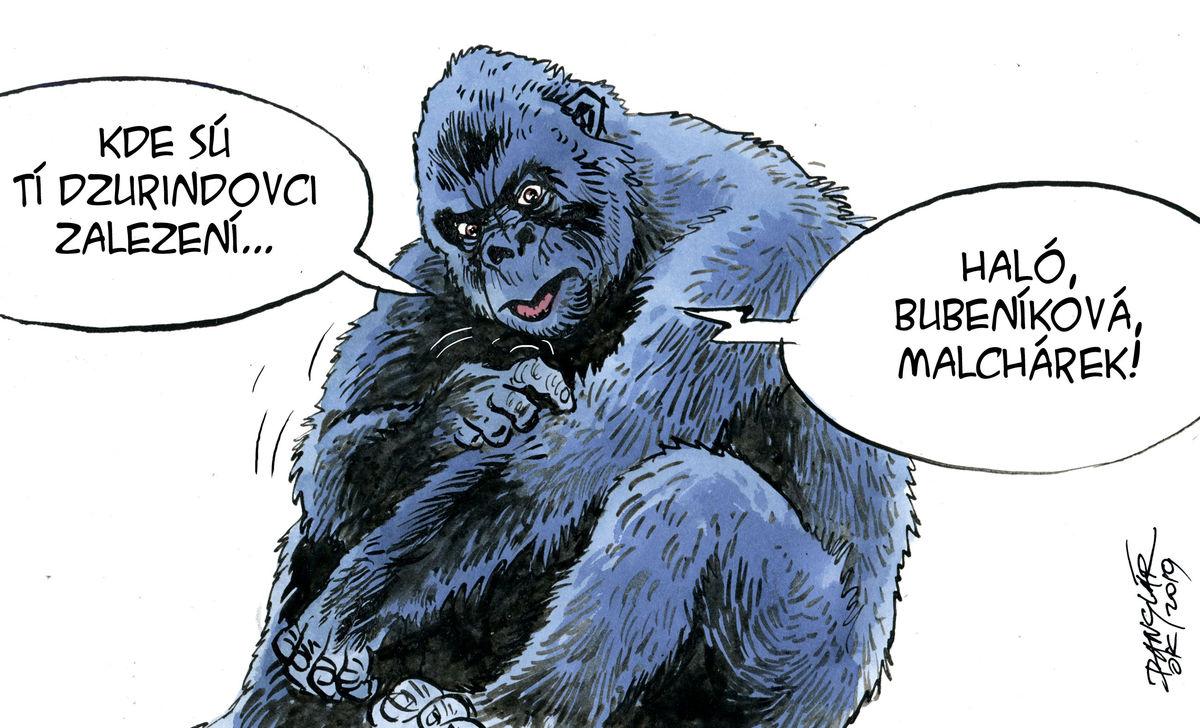 Karikatúra 19.10.2019