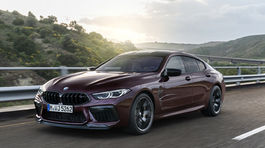 P90369597 high Res the-new-bmw-m8-gran-