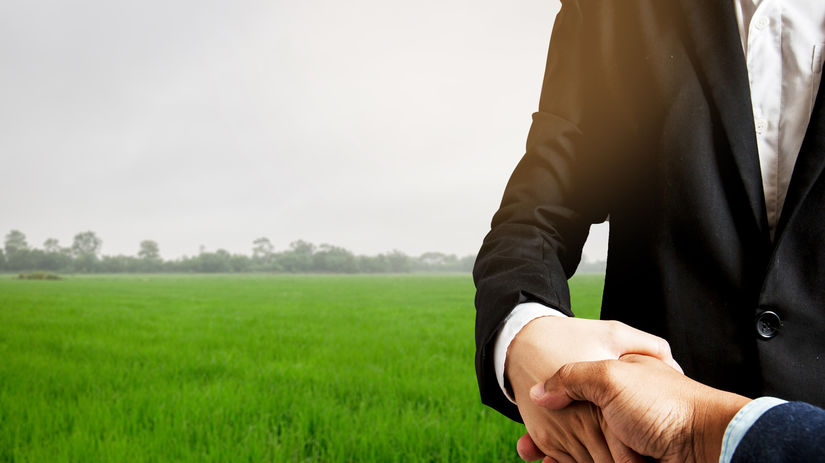 dohoda, ruky, tráva