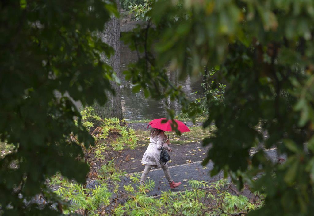 dážď, dáždnik, prší, počasie