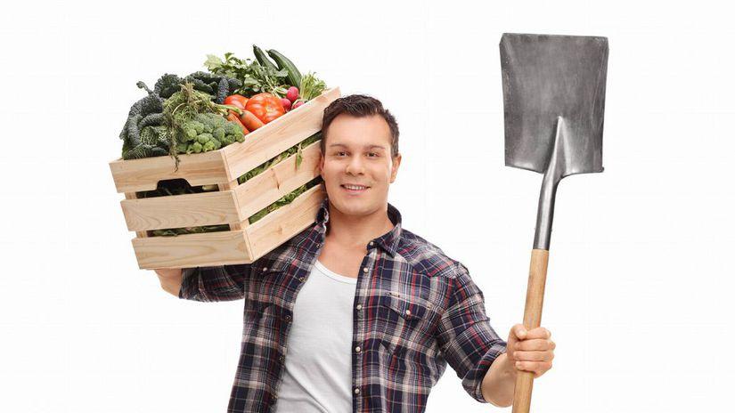 muž, lopata, zelenina