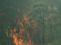 Austrália požiare