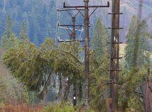 SR Ždiar počasie víchrica škody strom elektrina vedenie